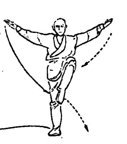 crane stance