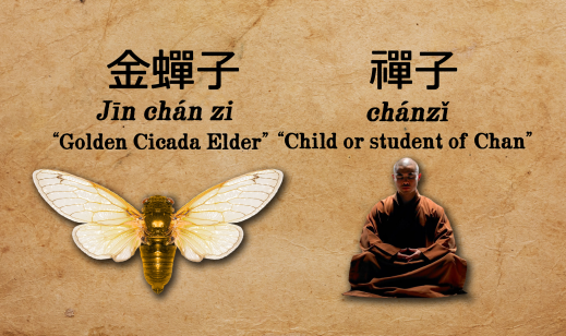 Chanzi - Cicada Zen Tripitaka Connection
