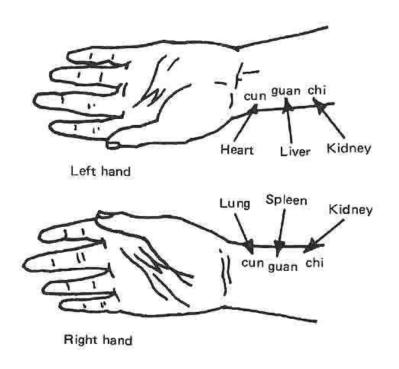TCM hand chart